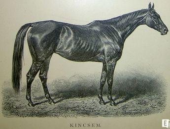 Hány versenyt nyert a magyar csodakanca Kincsem?