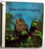 Séta erdőn-mezőn  kihajtós könyv 12 oldalas